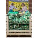 Retail Daffodil Pallet Box (80 Bags)